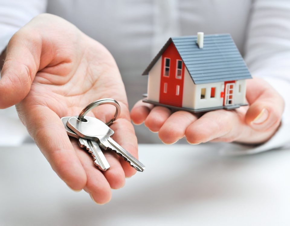 enchères immobilieres